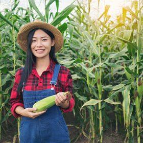 happy-farmer-in-the-corn-field-PWW4LKQ-1.jpg